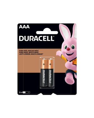 Pilha Duracell AAA 2unid
